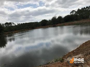 从化区西塘附近约50亩鱼塘山地果园房屋转让