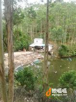 养殖首选广州从化区旅游胜地鳌头镇龙潭18亩鱼塘转让山塘出售有地下水有房屋水电