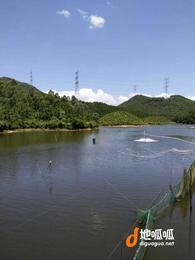 广东 江门 恩平市 180亩水库农场 转让
