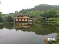 广东 佛山 高明区 80亩休闲度假农场 转让